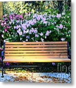 Savannah Bench Metal Print by Carol Groenen