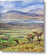 Savannah Landscape In Tanzania Metal Print