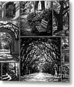 Savannah Shadows Collage Metal Print