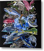 Save Our Seas In008 Metal Print