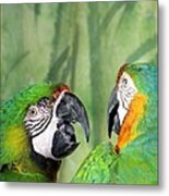 Say What? You Grounded Me For Flirting With Chick Named Daisy? Metal Print