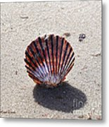Scalloped Metal Print
