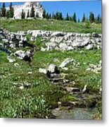 Scapegoat Amphitheater And Spring Metal Print