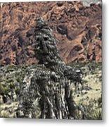 Scarecrow Cactus Metal Print