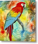 Scarlet Macaw In Abstract Metal Print