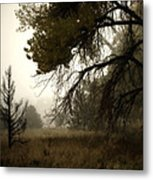 Scary Trees Metal Print
