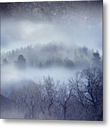 Scary Trees Metal Print by Ric Soulen