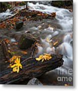 Scattered Gold Metal Print