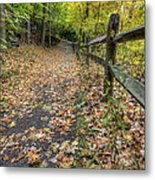 Scene In Mill Creek Park  Metal Print