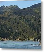 Scenery On Cook Strait Metal Print