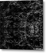 Scenic And Twisted Metal Print
