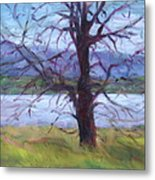 Scenic Landscape Painting Through Tree - Spring Has Sprung - Color Fields - Original Fine Art Metal Print