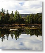 Scenic Lily Pond Metal Print