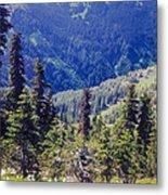 Scenic Mountain Valley Metal Print
