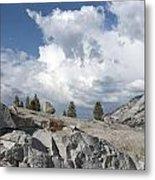 Scenic View In Yosemite National Park Metal Print