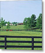 Scenic View Of Horse Farm, Woodford Metal Print