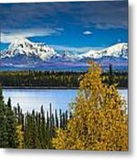 Scenic View Of Mt. Sanford L And Mt Metal Print