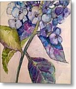 Scented Beauty Metal Print