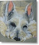 Schnauzer Pet Portrait Original Oil Painting 8x10 Inches Made To Order Metal Print