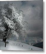 Schneeweg Metal Print