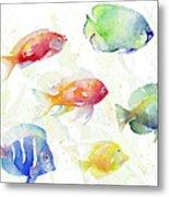 School Of Tropical Fish Metal Print