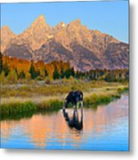 Schwabacher Morning Light  Metal Print