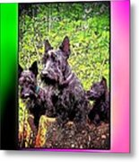 Scotties The Die Hard Metal Print