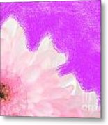 Scream And Shout Pink White Purple Metal Print
