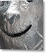 Sculp Face Metal Print