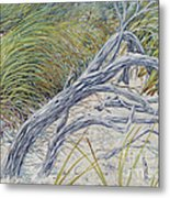 Sculpted By The Wind Metal Print