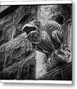 Sculpted Frog - Art Unexpected Metal Print