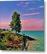Sea And Tree Metal Print