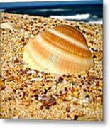 Sea Beyond The Shell Metal Print