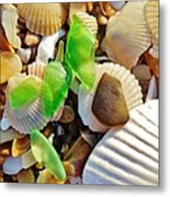 Sea Glass And Shells 17 10/2 Metal Print