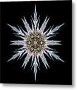 Sea Holly I Flower Mandala Metal Print