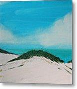 Sea Oat Dune 4 Metal Print