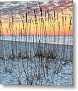 Sea Oat Sunrise Metal Print