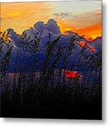 Sea Oat Sunset Metal Print
