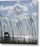 Sea Oats And Safety Metal Print