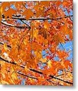 Sea Of Orange And Blue Metal Print