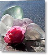 Sea Rose Metal Print by Barbara McMahon