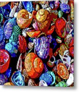 Sea Shell Abstract Metal Print
