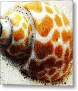 Sea Shell Beach Painting Art Metal Print