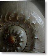 Sea Shell Joy Metal Print