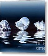 Sea Shells On Water Metal Print