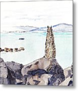Sea Squirrel Metal Print