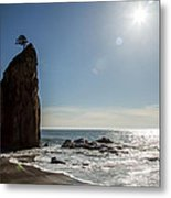 Single Sea Stack In Olympic National Park Metal Print