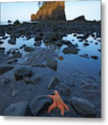 Sea Stacks And Star Fish Metal Print