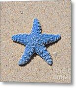 Sea Star - Light Blue Metal Print
