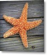 Sea Star On Deck 2 Metal Print